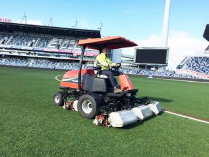 Cylinder Mowing